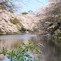 Photos: 100408-4井の頭公園