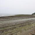 写真: 100513-50鬼の洗濯岩8