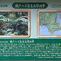 Photos: 100513-87鵜戸ヘゴ自生地北限地帯