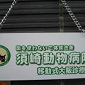 写真: 今日と明日は須崎動物病院移...