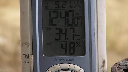 日陰ですが30℃越え・・・