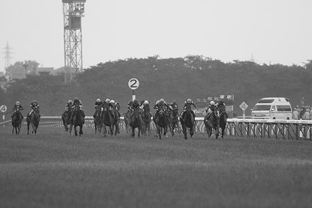 2010 優駿牝馬直線