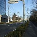 Photos: さくら通り - 桑野 - 4