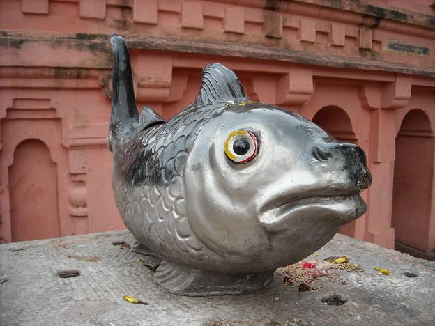 リアルな魚