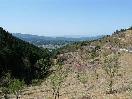 添田公園(3)