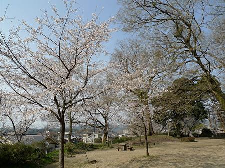 亀山公園(3)