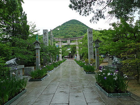 雨の宮地嶽神社(2)