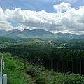 写真: 四季彩ロード~町田バーネット牧場へ向かう