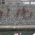 Photos: 長崎~眼鏡橋のハートストーンを探せ(4)