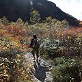 IMG_8916那須 茶臼岳 姥ヶ平の紅葉2