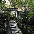 写真: IMG_9933京都の紅葉_2010年11月