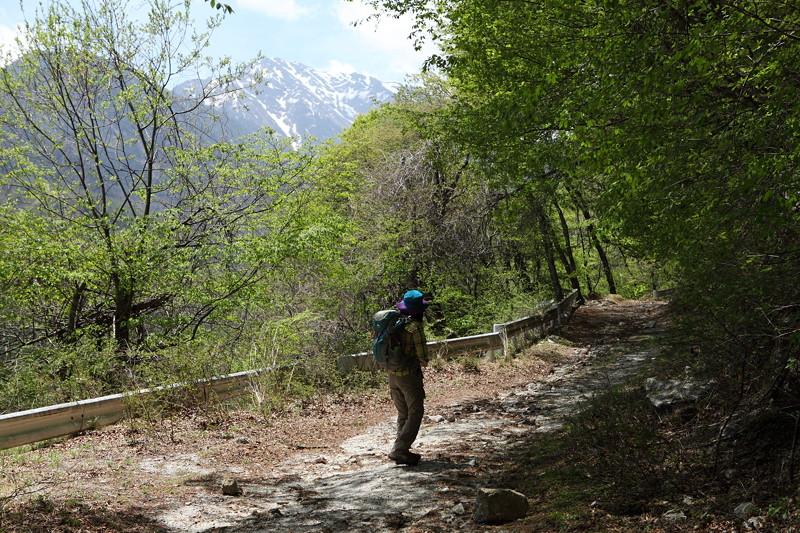 IMG_2701日向山登山2