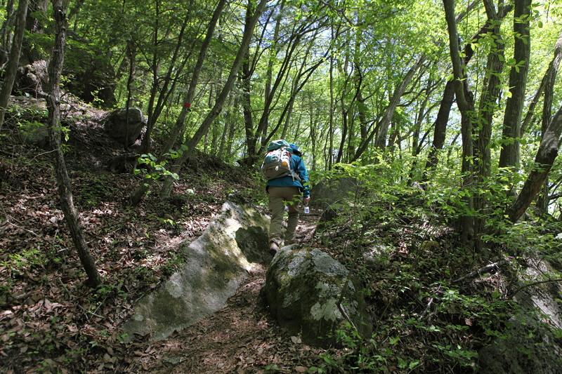IMG_2665日向山登山2