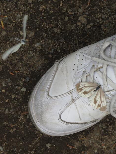 靴の上に。