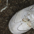 Photos: 靴の上に。
