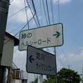 見沼田んぼの散歩道、さいたま市へ行きました!その5