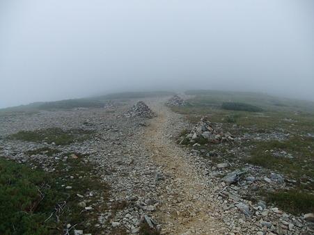 小蓮華山への登山道