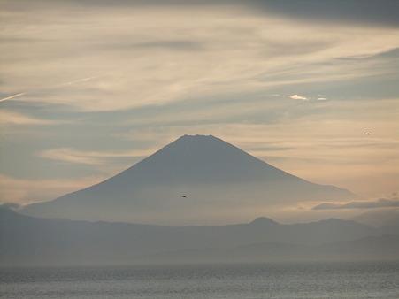 7月の富士山
